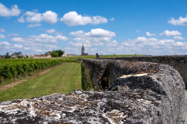 Une journée à Saint Emilion avec Bordeaux Wine Trails